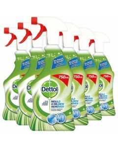 Dettol Mould & Mildew Remover 750ml (Pack of 6)
