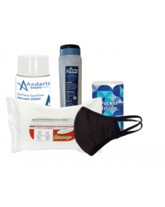 Personal and Workspace Protection Kit - Reusable Mask